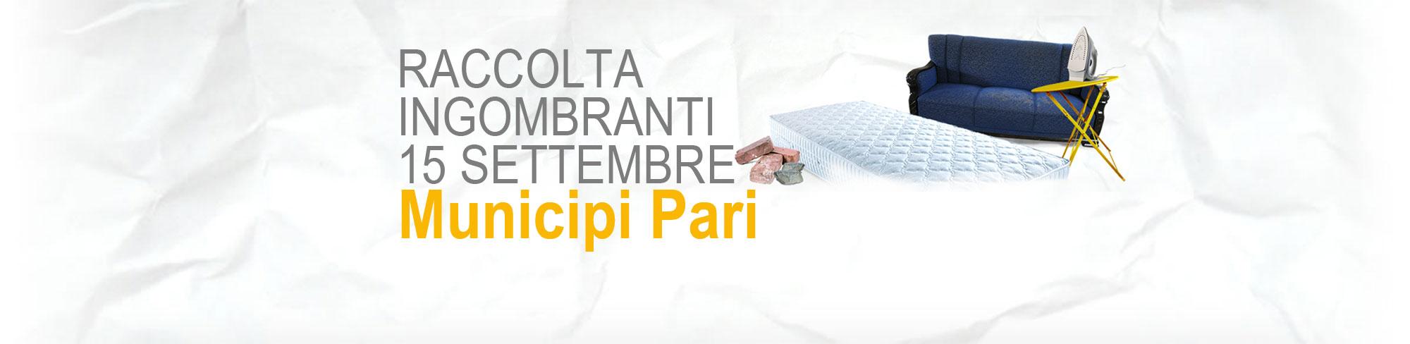 Raccolta Rifiuti Ingombranti Roma Calendario 2020 Municipi Dispari.Raccolta Differenziata